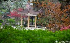 2018年中国科大硕士研究生招生考试部分科目考试大纲