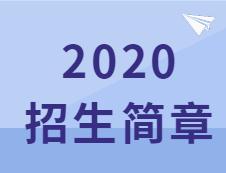 速查:这些院校2020招生简章已经公布!