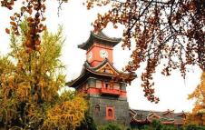 四川大学2020年公共管理学院研究生初试及复试参考书目