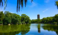 北京大学医学部2020年硕士研究生招生专业目录