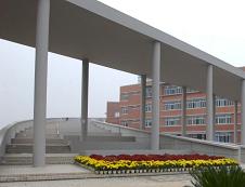 郑州大学2019年攻读硕士学位研究生自命题科目考试大纲