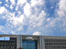 河南科技大学信息工程学院2019年硕士研究生招生考试自命题科目考试大纲