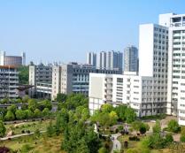 河南科技大学材料科学与工程学院2019年硕士研究生招生考试自命题科目考试大纲